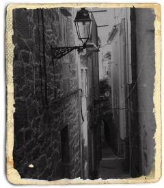 Cater Street D