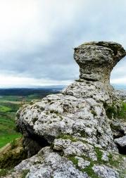 Hollister castillo roca D