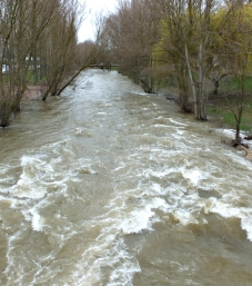 Aventura río D
