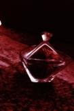 Veneno cristal D