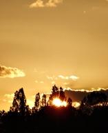 Crepúsculo Oslo D