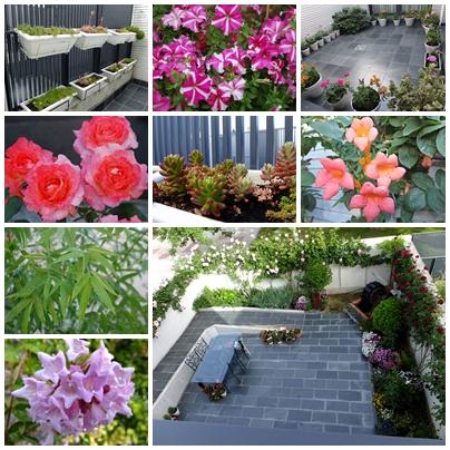Jardinería D