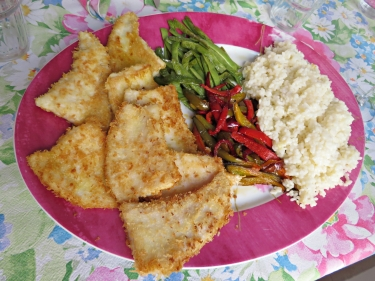 Platusas arroz hortalizas 1