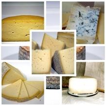 Todo queso D